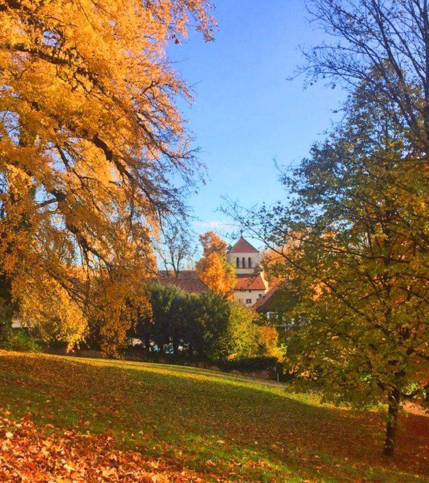 Abbaye de Bonmont automne