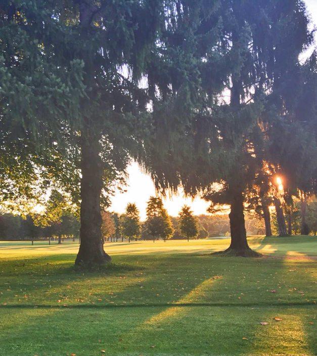 parc arbres domaine Bonmont