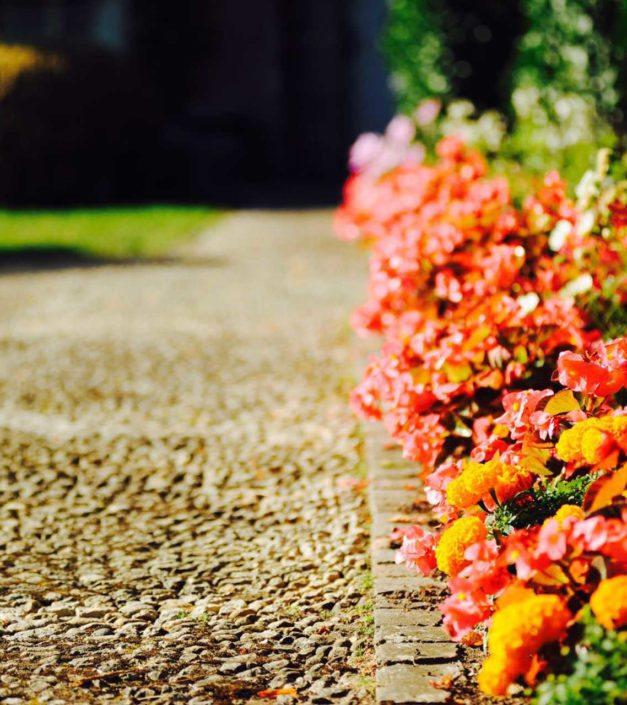 allée de fleurs jardin château de Bonmont
