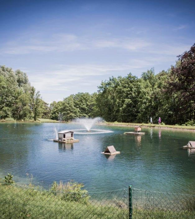 visuel etang domaine parc Bonmont